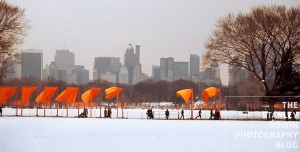 Central Park New York with Christo's The Gates